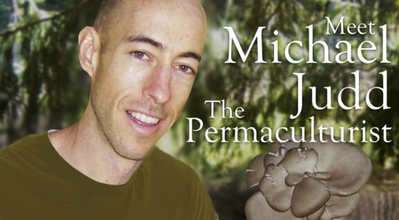 Michael Judd Fantastic Fungi Tribe