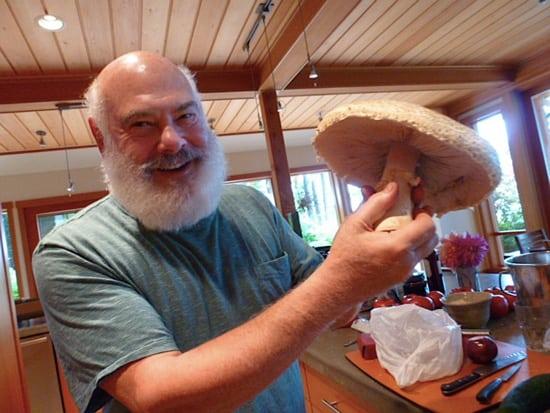 Dr. Weil Fantastic Fungi