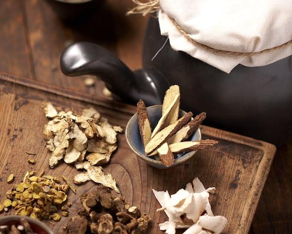 The Healing Power of Medicinal Mushrooms - Fantastic Fungi