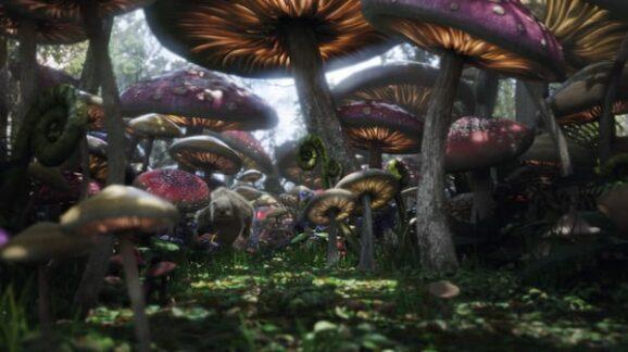 Alice in Wonderland Fantastic Fungi