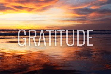 Louie Schwartzberg's Gratitude Revealed