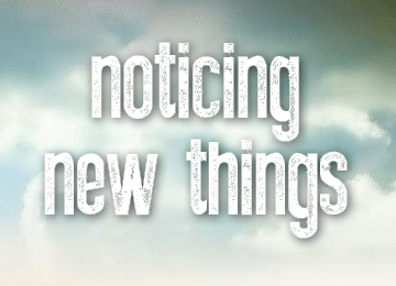 noticing-things