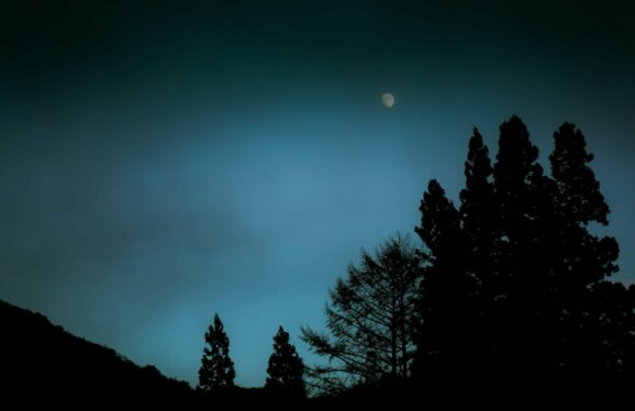 Making the Invisible Visible: The Moon. Feel meditation benefits while you're getting back to nature. Feel the nature wonder while gazing at the moon. Louie Schwartzberg, Gratitude Revealed