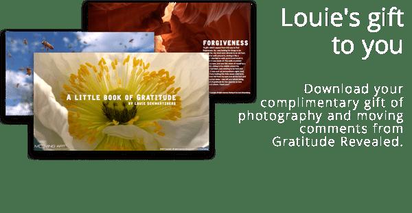 Louie Schwartzberg Gratitude E-book
