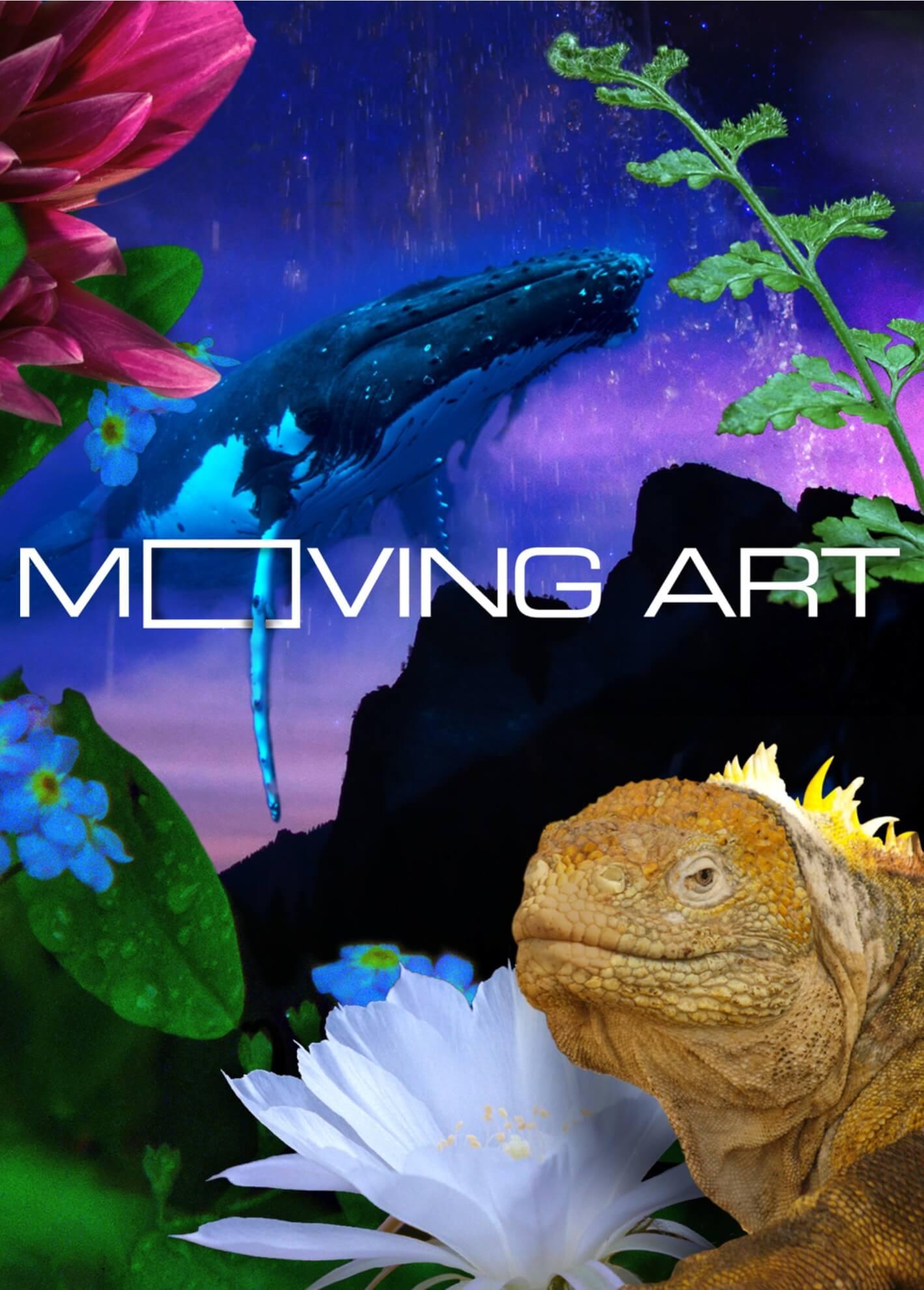 Moving Art Netflix Season 3