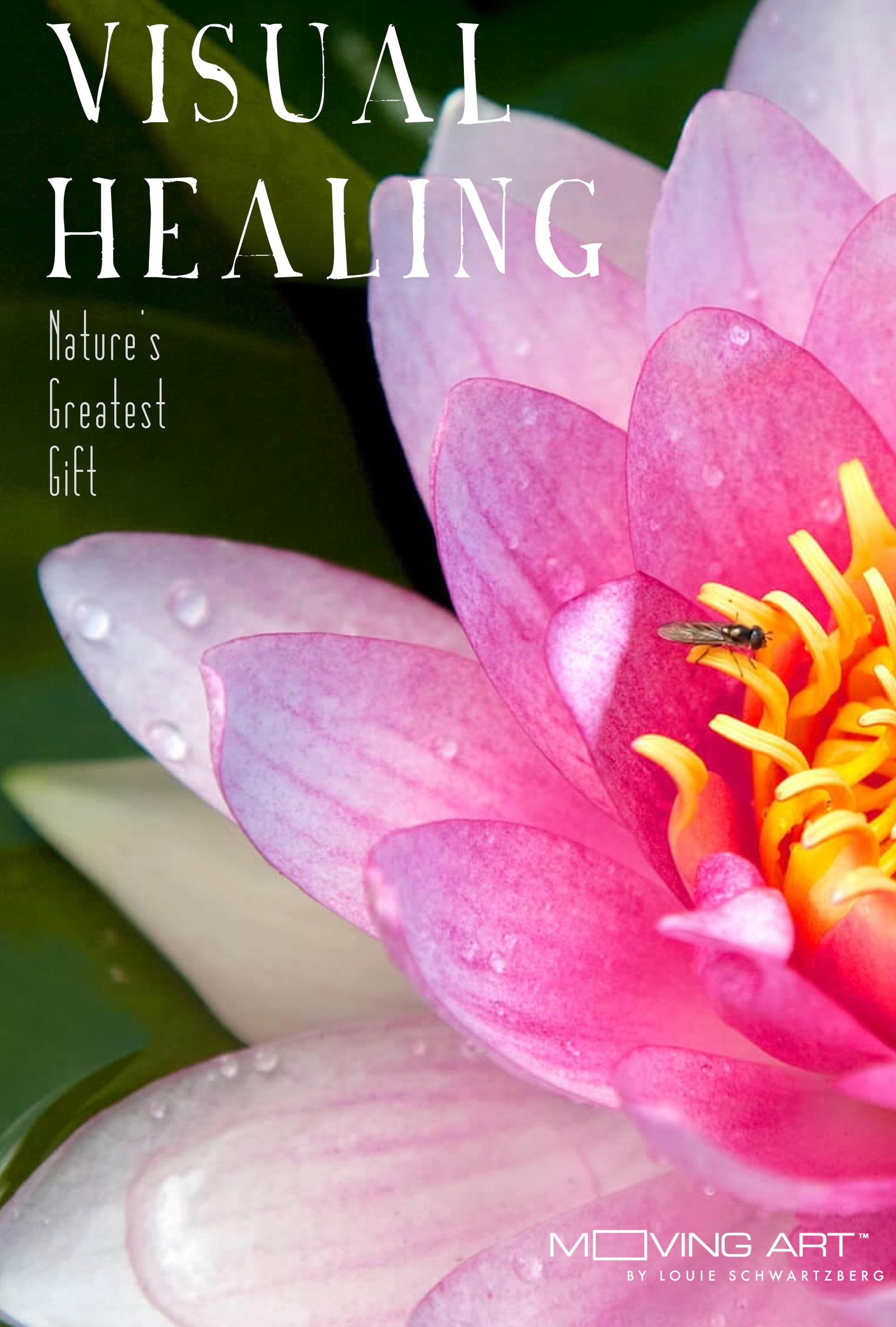 Visual Healing flower poster