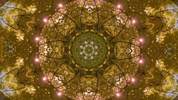 Author Daniel Grauer believes we need 17% of people to experience the unity of all life. That awareness would drive a global shift in consciousness. Fall Mandala