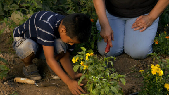 Man helping boy plant flowers. Gratitude List is something that will include words of gratitude and meditation gratitude. Nature therapy can also help you write gratitude journals.