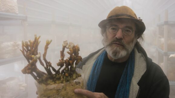 World Health Day is all about Mushrooms, Trees, Flowers, Garden vegetables and Ocean Water. Get back to nature and change your states of consciousness! Paul Stamets holding Fungi