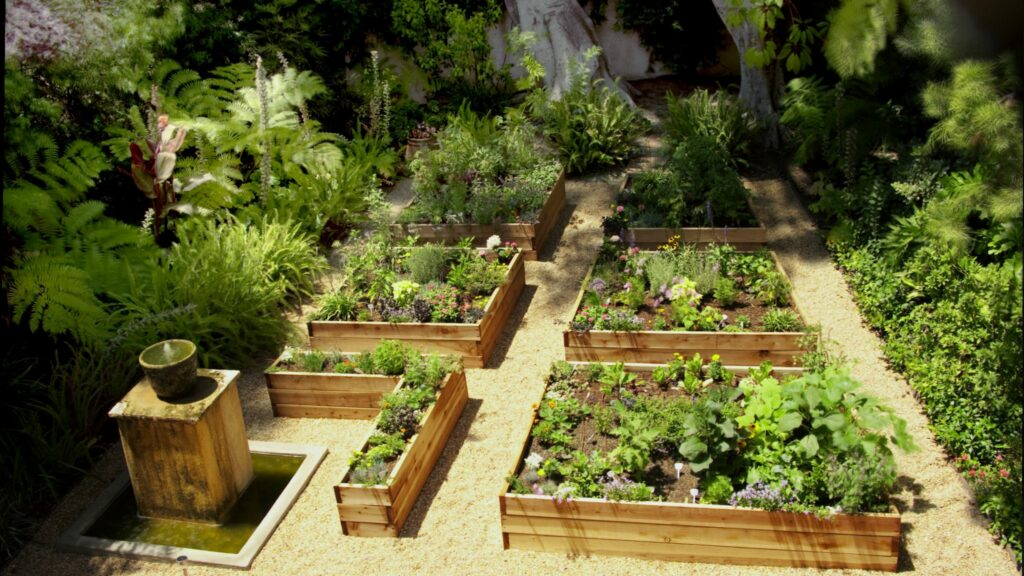 The Benefits of Planting a Vegetable Garden Image