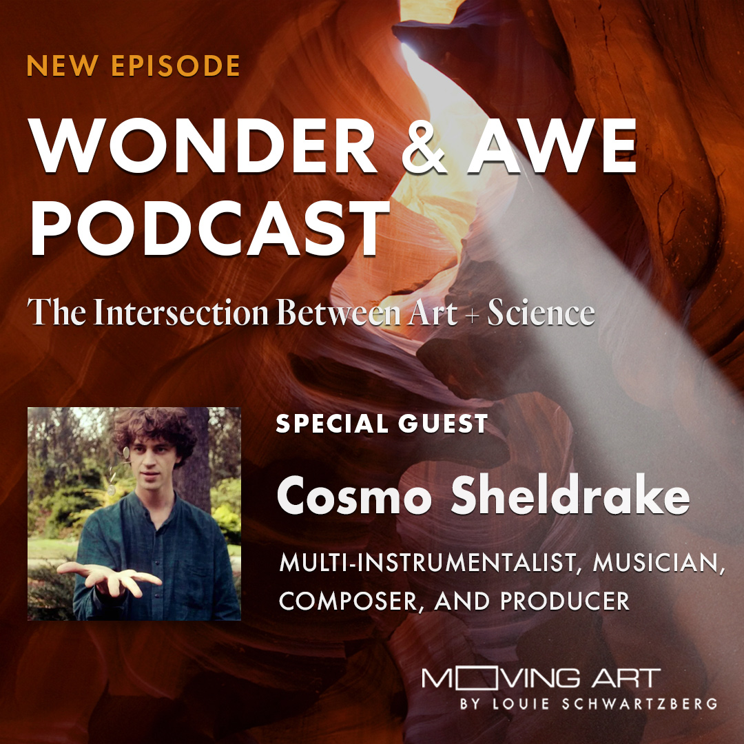 Cosmo Sheldrake on Wonder and Awe Podcast